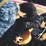 8/3(土)16:00-<span>ハートフルコンサート@ココリア多摩センター</span>
