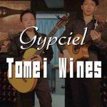 "<span class=""title"">4/17(土)17:30- Gypciel LIVE@Tomei Wines(横浜・関内)</span>"